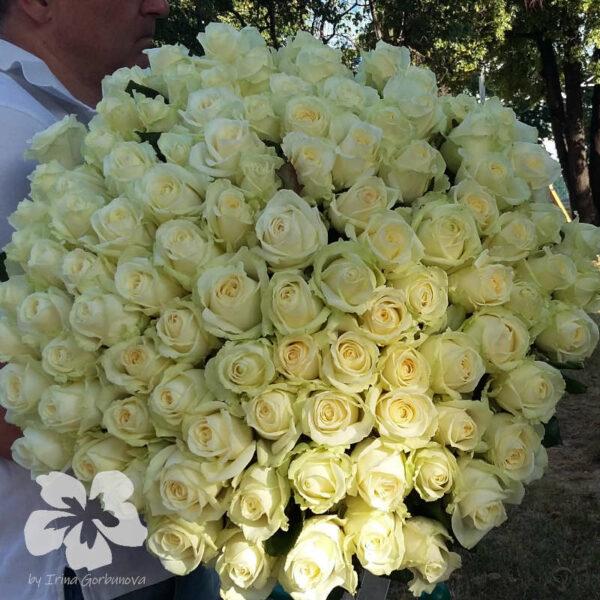 101 long white roses